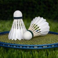 Badminton Pay As You Play (Adult)